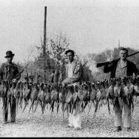 Ray Sinnen and two army friends with pheasants - circa 1937